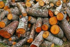 Pila grande de leña Pila grande de leña para la chimenea álamo temblón rojo aserrado de los troncos de árbol llenado en un montón Imágenes de archivo libres de regalías