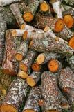 Pila grande de leña Pila grande de leña para la chimenea álamo temblón rojo aserrado de los troncos de árbol llenado en un montón Foto de archivo