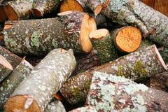 Pila grande de leña Pila grande de leña para la chimenea troncos de árbol aserrados álamo temblón rojo y abedul, llenados en un m Imagen de archivo libre de regalías