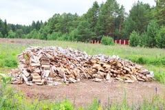Pila grande de madera de abedul en el claro rodeada por la cerca Fotografía de archivo