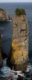 Pila majestuosa del mar Fotos de archivo