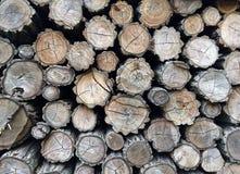 Pila piegata di legna da ardere Fotografie Stock
