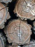 Pila piegata di legna da ardere Fotografia Stock Libera da Diritti