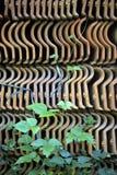 Pila que sube de la vid de tejas Imagen de archivo libre de regalías