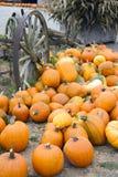 Pila vegetal Autumn Pumpkins October del carro viejo de la escena de la granja Imagen de archivo