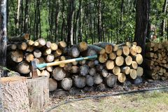 Pila y hacha de madera en área cultivada canadiense fotos de archivo libres de regalías