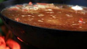Pilaf Afghan, Uzbek, Tajik national cuisine dish preparation garlic addition stock footage