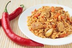 Pilaf with chunks of chicken and carrots Stock Photos