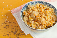 Pilaf made of rice and chicken Stock Images