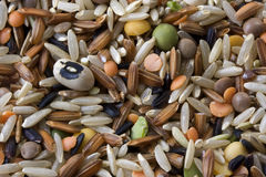Pilaf mix. With brown and black, Japanica rice, black eye, split green, yellow pea, lentils Royalty Free Stock Images