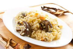 Pilaf with mushrooms Stock Images