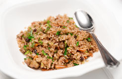 Pilaf, traditional dish of the Middle East Royalty Free Stock Photo