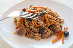 Pilaf with turkey, carrots, spices Royalty Free Stock Photos