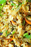Pilaf with vegetables Stock Images