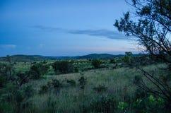 Pilanesberg nationalpark Arkivbilder