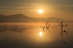 Pilanesberg soluppgång royaltyfri fotografi