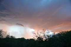 Before the storm. Pilansberg Game Reserve South Africa minutes before a heavy rain Royalty Free Stock Photos