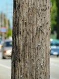 Pilar de madera en una calle Anuncio del lugar gratis Ponga los classifieds gratis imágenes de archivo libres de regalías