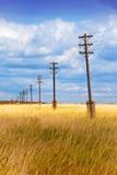 Pilar eléctrico de madera viejo en el campo Foto de archivo libre de regalías