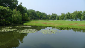 Pilar med grässlätten i den västra sjön Fotografering för Bildbyråer