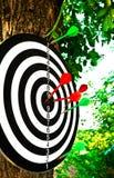 pilar target thrust Royaltyfri Fotografi