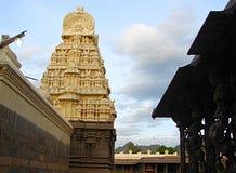 Pilares de piedra tallados en el templo hindú - arquitectura de Dravidian Foto de archivo