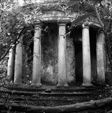 Pilares en el bosque Fotos de archivo
