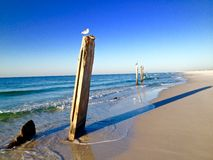 Pilares impares en una playa, con los pájaros sentándose en ellos Imagenes de archivo