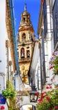 Pilares Mezquita Córdoba España de los arcos Fotos de archivo