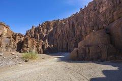 Pilars de la roca en el barranco Fotografía de archivo libre de regalías
