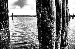 Pilars noirs et blancs dans la baie image libre de droits