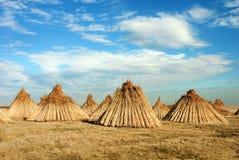 Pilas de bastón en una forma cónica. Foto de archivo