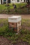 Pilas de colmenas de la abeja del langsroth Fotos de archivo