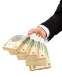 Pilas de dinero en circulación rumano Fotos de archivo libres de regalías