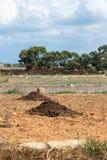 Pilas de fertilizante en un campo imagen de archivo