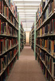 Pilas de la biblioteca Foto de archivo
