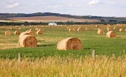 Pilas de la pradera y de la paja del otoño Fotografía de archivo