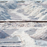 Pilas de la sal en la granja de la sal, la India Imagen de archivo