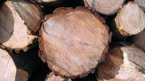 Pilas de madera aserrada Fotos de archivo