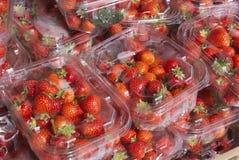 Pilas de paquetes de fruta de la fresa Imagenes de archivo