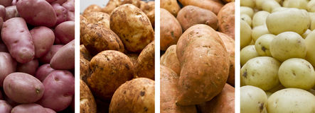 Pilas de patatas imagen de archivo libre de regalías