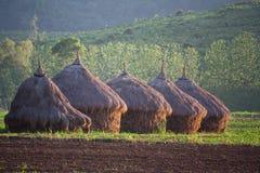 Pilas del campo y del heno Imagen de archivo libre de regalías