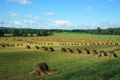 Pilas del heno de Amish Fotos de archivo libres de regalías