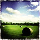 Pilas del heno en campo verde Foto de archivo libre de regalías