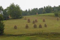 Pilas del heno en el campo Fotos de archivo