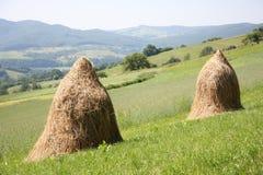 Pilas del heno en el campo de las montañas Fotos de archivo libres de regalías