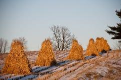 Pilas del heno en el país de Amish Foto de archivo
