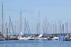 Pilastro con gli yacht attraccati, il lago Lemano, Svizzera fotografia stock