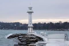 Pilastro congelato Fotografie Stock