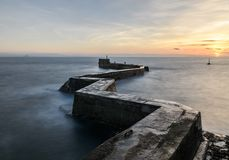 Pilastro del frangiflutti della st Monans, Fife Scozia fotografia stock libera da diritti